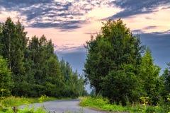 Asfaltowej drogi prowadzenia głęboko w las, Rosja zdjęcie stock