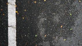 Asfaltowej drogi tekstura z pomarańcze spada liśćmi Fotografia Royalty Free