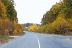 Asfaltowy autostrady rozdroże na tle jesieni drzewa zdjęcia stock