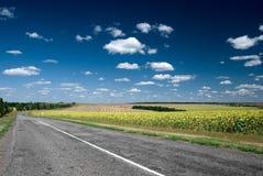 asfaltowy pola asfaltowy drogowy rozciąganie Zdjęcia Stock