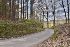Asfaltowy sposób prowadzi wioska Karba podczas sping w czeskim krajobrazie w Machuv kraju Zdjęcia Stock