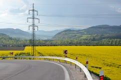 Asfaltowy trasy arround oilseed gwałta pole, elektryczna kolumna w tle Fotografia Stock