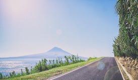 Asfaltująca droga w Azores biega wzdłuż trawiastych brzeg Atl Zdjęcia Royalty Free