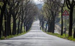 Asfaltująca droga zjazdowa zdjęcie royalty free