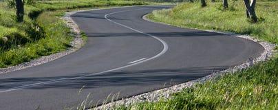 asfaltväg Royaltyfri Bild