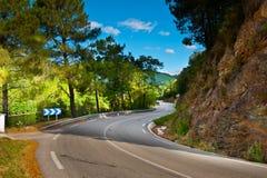asfaltväg Royaltyfria Bilder