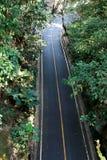 Asfaltväg i den tropiska skogbakgrunden Väg i Chaigmai Thailand royaltyfri foto