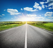 Asfaltväg i fält under blå himmel Royaltyfri Fotografi