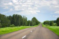 Asfaltväg i fältet och skogen Royaltyfri Foto