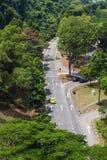 Asfaltväg i mitt av djungeln Fotografering för Bildbyråer