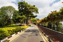 Asfaltväg i parkera Royaltyfri Foto