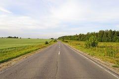 Asfaltväg längs de gröna fälten Arkivfoton