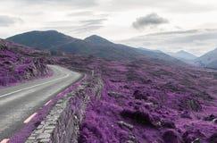 Asfaltväg och kullar på connemaraen i Irland royaltyfri foto