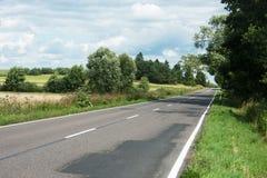 Asfaltväg och träd Royaltyfria Foton