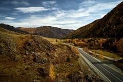 Asfaltväg till bergen av Altai som passerar till och med höstlandskapet royaltyfri fotografi