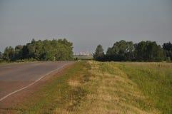 Asfaltvägen till och med gräsplanen sätter in Royaltyfri Foto
