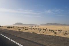 Asfaltvägen till och med sanddyerna Royaltyfri Fotografi