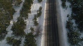 Asfaltweg die door het pijnboombos overgaan op de winter, bosverkeer Luchtonderzoek van het de winterbos stock footage