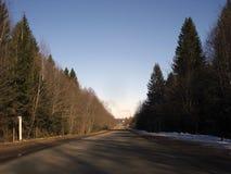 Asfaltweg door de zon wordt verlicht die door het bos overgaan dat Stock Fotografie