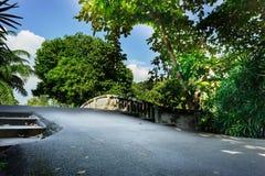 Asfaltweg op kanaalbrug rond groen bos royalty-vrije stock foto's
