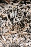 ash abstrakcyjne tło zdjęcia stock