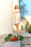Ash-berry and girl. Young girl with curly hair and ash-berry Stock Image