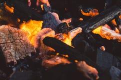 Ash, Blaze, Bonfire, Burn Royalty Free Stock Photography