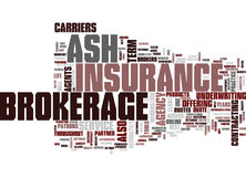 Ash Brokerage Word Cloud Concept Photographie stock libre de droits