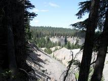 Ash canyon Stock Photos