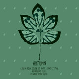 Ash leaf with abstract pattern for autumn design. Template for card, cover or invitation Stock Photo
