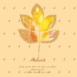 Ash leaf with watercolor pattern for autumn design Royalty Free Stock Photography