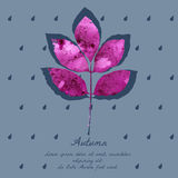 Ash leaf with watercolor pattern for autumn design. Stock Image