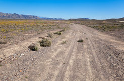 Ash Meadows National Wildlife Refuge Stock Photography