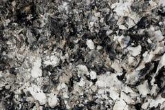 Ash texture Royalty Free Stock Photos