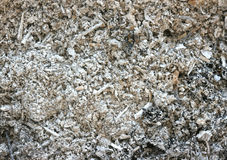 Ash texture Stock Images