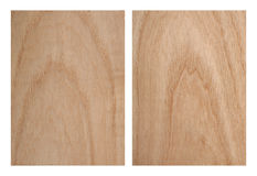 Ash Tree Texture. Ash tree wood texture teo pieces stock photography