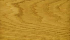 Ash veneer Stock Image