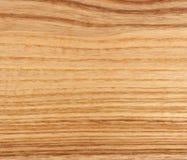 Ash wood Stock Photography