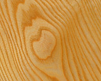 Ash wood background Stock Image