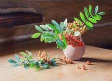 Ashberry στο ξύλινο υπόβαθρο Στοκ Εικόνες