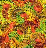 ashberry φύλλα φθινοπώρου διανυσματική απεικόνιση