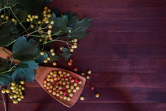 Ashberry on wooden background Stock Images