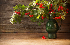 Ashberry on wooden background Stock Photography