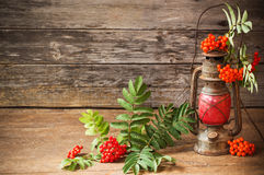 Ashberry on wooden background Royalty Free Stock Image