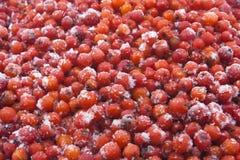 Ashberrymacro Stock Afbeelding