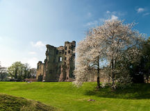 Ashby Castle Royalty Free Stock Photography
