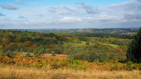 Ashdown Forest in Autumn Stock Photography