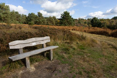 ASHDOWN FOREST, SUSSEX/UK - OCTOBER 17 : Bench in Ashdown Forest Royalty Free Stock Image
