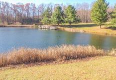 Ashe Park Trout Pond i Jefferson, North Carolina arkivfoto