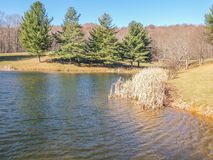 Ashe Park Trout Pond in Jefferson, North Carolina. Grass grows in the edge of this small pond found in Ashe County Park in Jefferson, North Carolina stock images